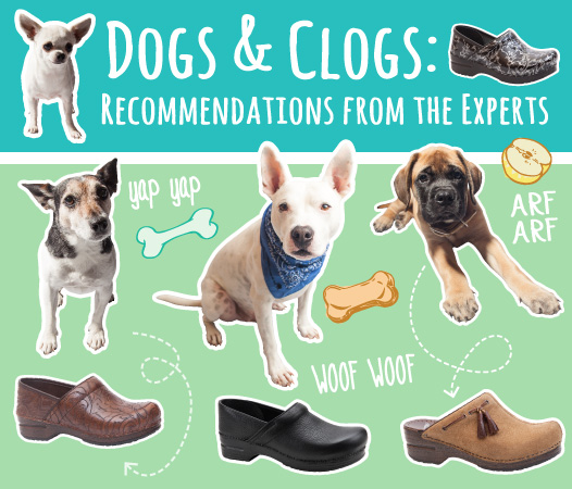DognClogs_post-01.jpg -