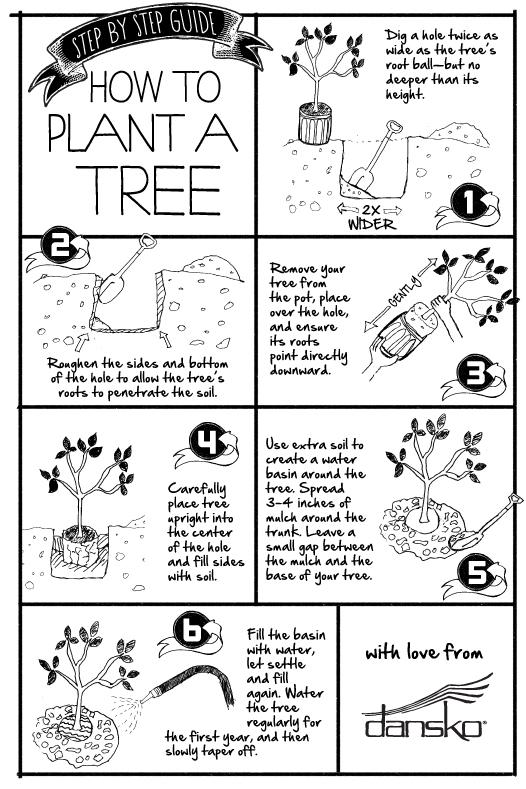 Arbor-Day-Sketches.jpg -