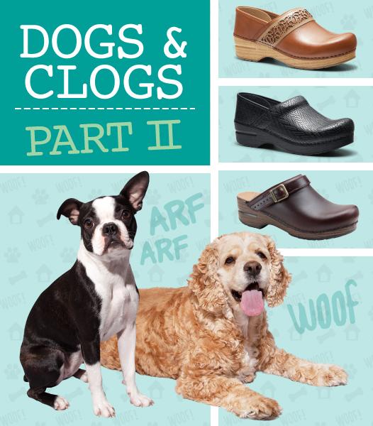 DogsNClogs2_1.jpg -