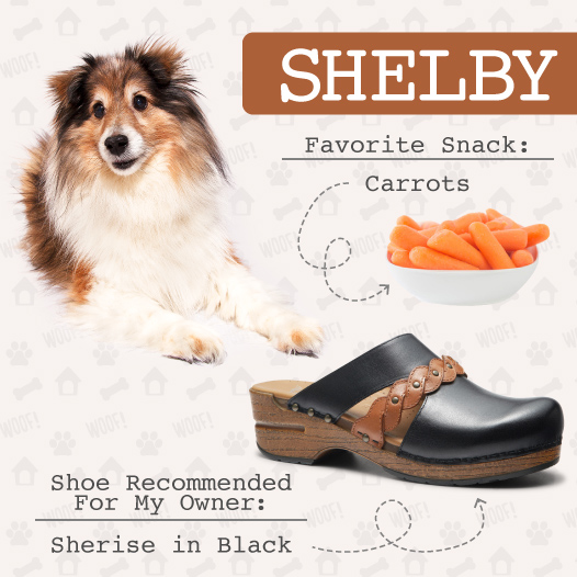 Dogs & Clogs: Recommendations from the Experts, Part II -