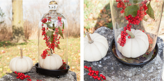 Thanksgiving DIY Overload: Bringing the Outside In -