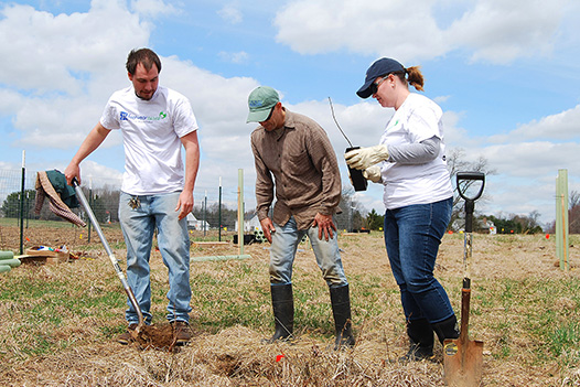 A Step-By-Step Guide to Planting your Arbor Day Tree - Dansko volunteers plant trees at Peacedale Park Preserve in Landenberg, PA