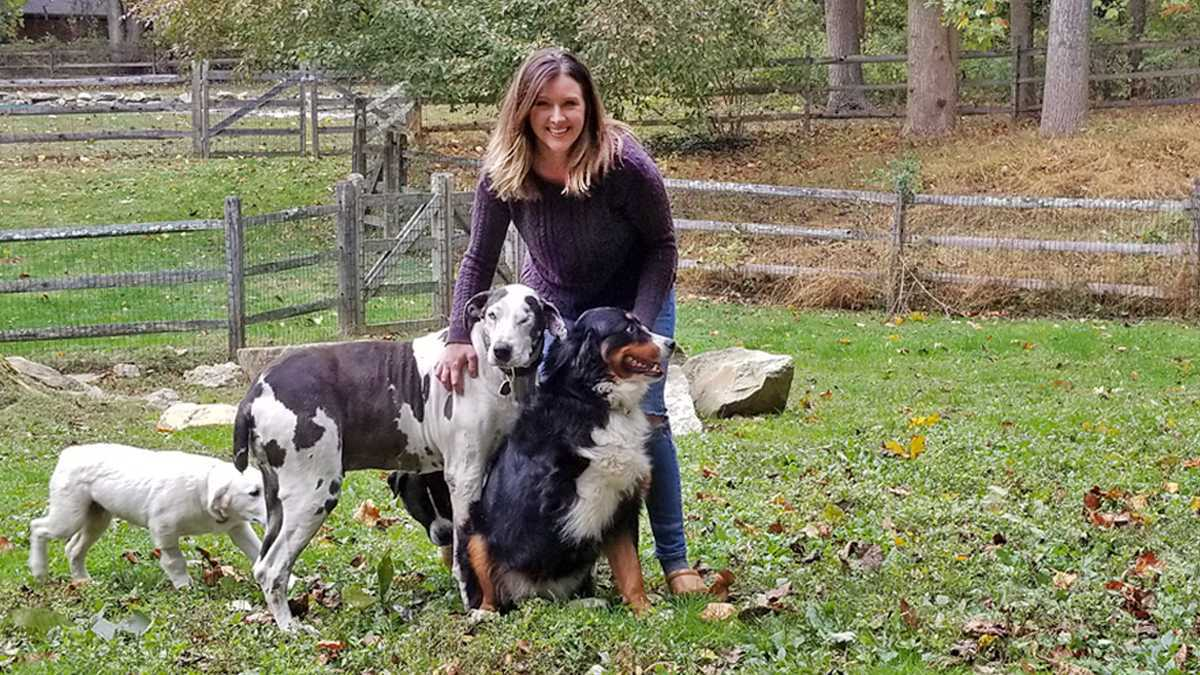 Meet Kristen: Founder of All 4 Paws Rescue