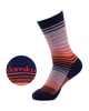 Picture of Stripe Crew Navy Sock
